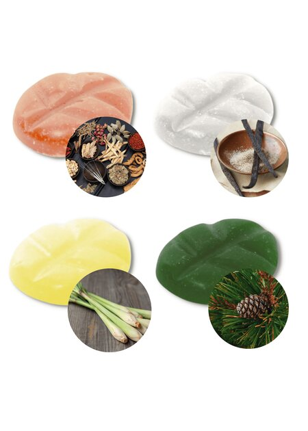 Scentchips Edition Winter Line: Aroma Santa